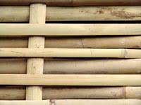 Bamboo Fence Building Build Bamboo Fencing For A Garden
