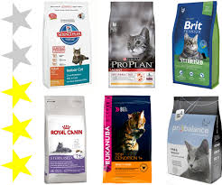 Premium Wet Food For Kittens - The Best For Kittens