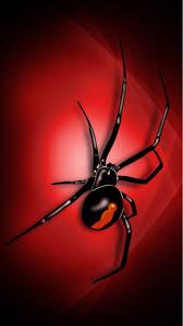 3d spider wallpaper iphone 8 2020 3d