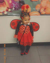 s ballerina ladybug costume party