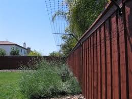Existing Fence Conversion System Kit For Cats Cat Proofing Dog Proof Fence Cat Fence