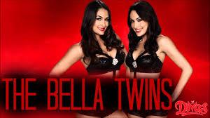 best 45 the bella twins wallpaper on