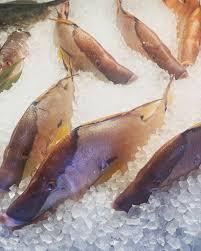 walts fish market on Twitter:
