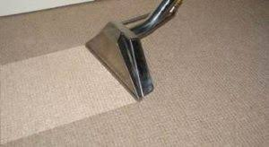 Carpet Dry Cleaning - Pet Stain Odor Removal - Carpet Repairs - ASC
