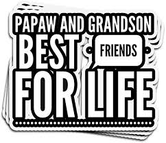 Amazon Com Viraltee 3 Pcs Stickers Papaw Grandson Best Friends For Life 4 3 Inch Die Cut Decals For Laptop Window Kitchen Dining