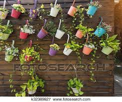 Hanging Flower Pots With Fence Stock Photo K32389827 Fotosearch