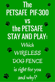 The Petsafe Pif 300 Vs The Stay And Play Dig Your Dog