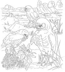 The Best Free Kleurplaten Coloring Page Images Download From 92