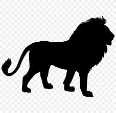 Lion Bumper Sticker Wall Decal Png 800x800px Lion Big Cats Black And White Bumper Sticker Carnivoran