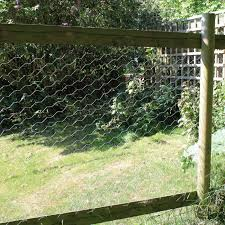 Chicken Wire Galvanised Wire Fencing Mesh