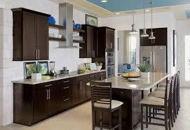 espresso paint color for kitchen