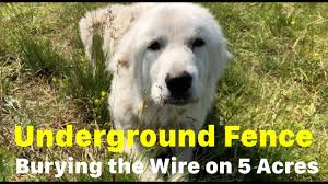 Sport Dog Fence Install Burying Wire Pt 1 Youtube