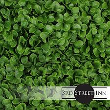 Artificial Hedge Outdoor Artificial Plant Great Boxwood And Ivy Substitute Sound Diffuser Privacy Fence Hedge Topiary Greenery Panels 12 Jasper B074q268hc