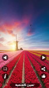 خلفيات الشاشة Cho Android Tải Về Apk