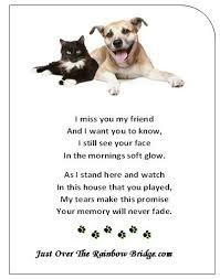 the way most of us feel about lost pets best quotes dog