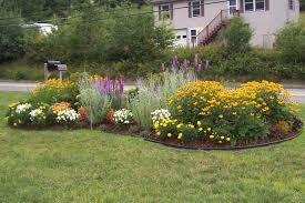 perennial garden plans for zone 6