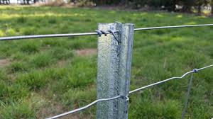 Close Up Stock Post In Field Steel Fence Posts