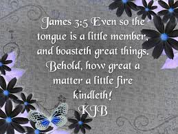 James 3:5 | Kjv, Words of jesus, King james bible