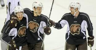 Aaron Ness Returns to Hershey on One Year, Two-Way Contract – Hershey Bears  Hockey Nation