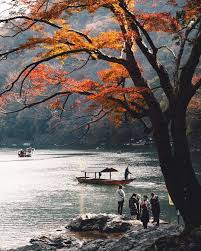 Visit Japan: Autumn may be at an end, however we couldn't help but share  this photo of the br... - Alo Japan