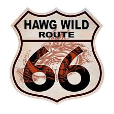 Hawg Wild Route 66 3 Pack Of Vinyl Decal Stickers 5 For Laptop Car Walmart Com Walmart Com