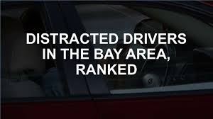 Roadkill Report Bay Area Motorists Lead The State In Hitting Wild Animals