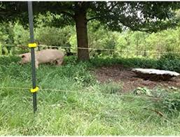 Explore Electric Fences For Horses Amazon Com