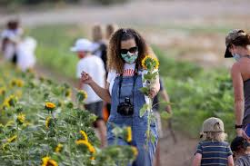 Las Vegas' Gilcrease Orchard welcomes visitors during summer heat | Las  Vegas Review-Journal