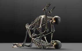 best 30 skeleton desktop backgrounds