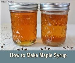 how to make maple syrup in the backyard