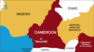 Cameroon - Global Centre for the ...