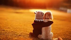 best friends cute child dog hd 5k