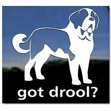 Amazon Com Got Drool Saint Bernard Dog Vinyl Window Decal Sticker Kitchen Dining