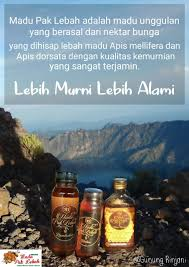 """search results for """""""" page madu pak lebah"""