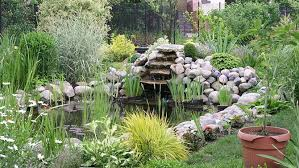 how to build a backyard pond lowe s