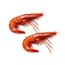 Wild Red Shrimp from Palamos, 2.2 lbs