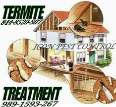 Residential Pest Control Services, In Delhi Ncr | ID: 22031837697