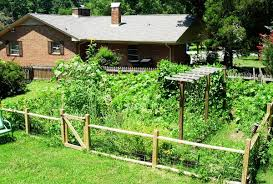 Vegetable Garden Fence Ideas Decoor