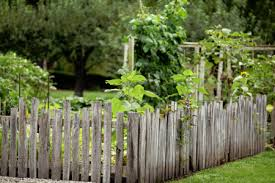 Choosing Option For Rustic Backyard Fence Ideas Homescorner Com