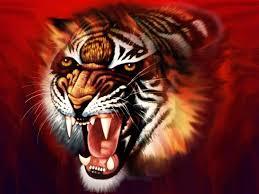 3d Hd Tiger Wallpapers Wallpaper Cave