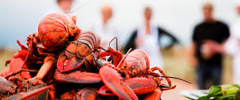A Foodie's Tour of PEI
