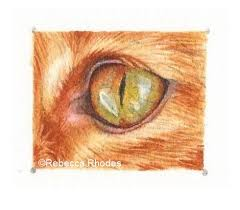 paint a ginger cat eye in watercolor