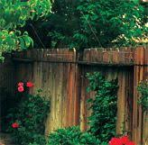 Page Not Found Cat Fence In Cat Fence Diy Cat Enclosure Cat Enclosure