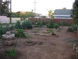 how to grow a veggie garden by sea