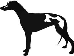 Amazon Com Yws Vinyl Sticker Decal Greyhound Sticker Laptop Car Truck Window Bumper Notebook Vinyl Decal Home Kitchen