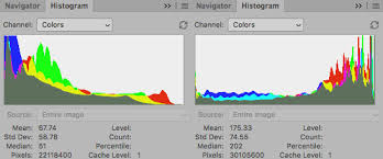how to read a histogram in camera and