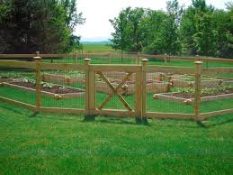 Dog Fence Dog Runs Kennels The Woodlands Spring Magnolia Conroe Willis Texas