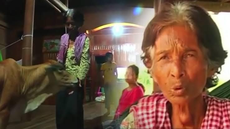"""Hasil gambar untuk Wanita 74 Tahun Nikahi Sapi! yang Dilakukan saat Berdua di Ranjang Bikin Melongo"""""""