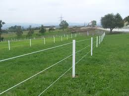 Electric Fencing Contractor Ricelake Wi 715 781 0822