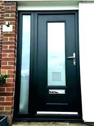 front door covering ideas window side